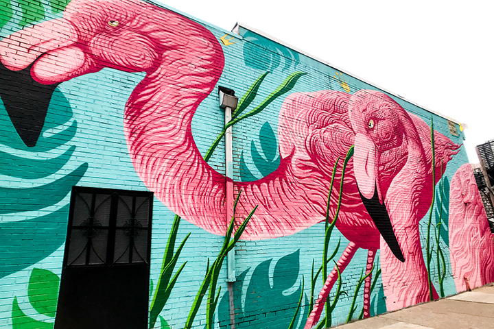 Pigmented Places: The Most Colorful Places in Chicago